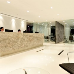 Reception of business center. Chic and unrivaled. Central air-conditioning. Office furniture provided. (Wheelock House)
